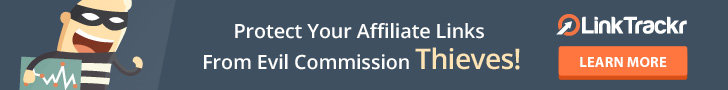 protect you affiliate link from eveil theif