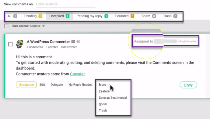 Thrive themes comment Plugin moderation review
